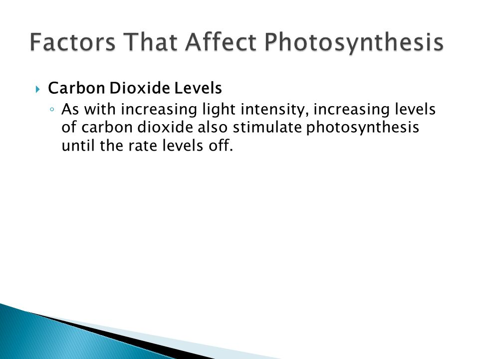  Carbon Dioxide Levels ◦ As with increasing light intensity, increasing levels of carbon dioxide also stimulate photosynthesis until the rate levels