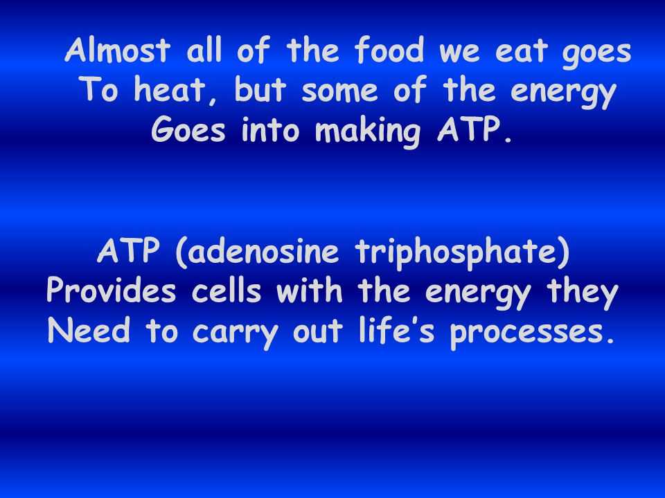 Heterotrphs are organisms that Must get energy from food instead Of directly from sunlight. We are heterotrophs because We can't make our own food In