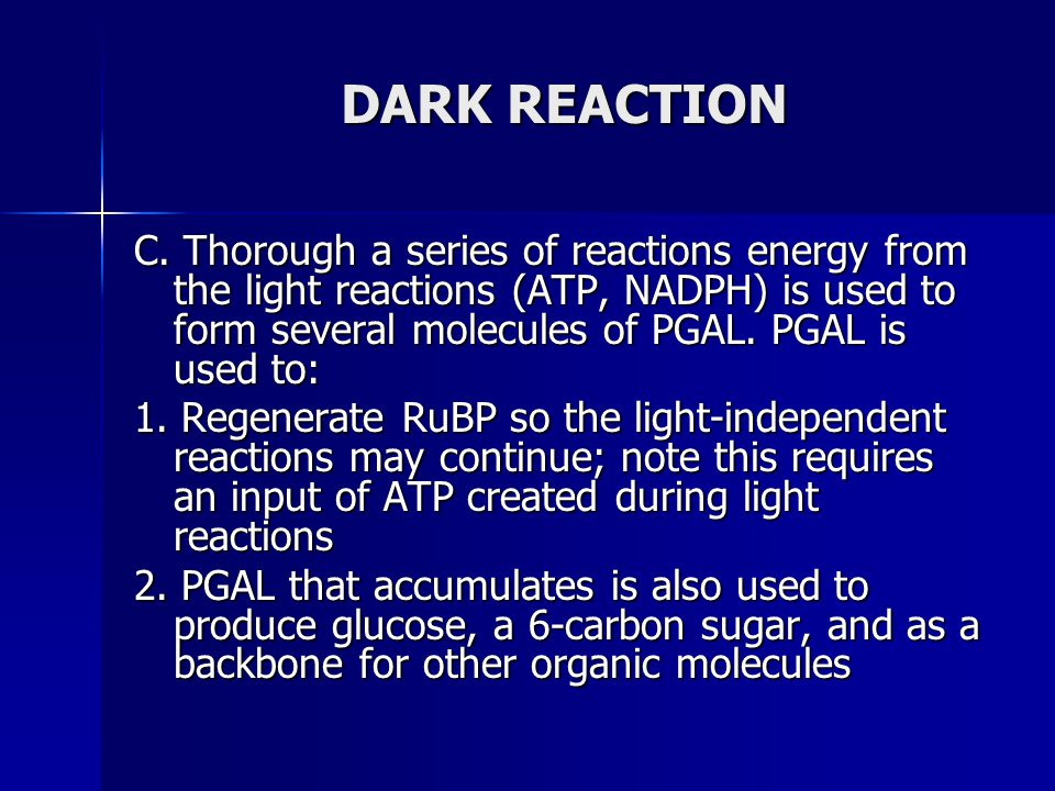DARK REACTION C. Thorough a series of reactions energy from the light reactions (ATP, NADPH) is used to form several molecules of PGAL. PGAL is used t