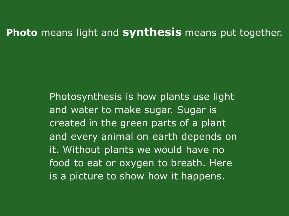 Photosynthesis is how plants use light and water to make sugar.
