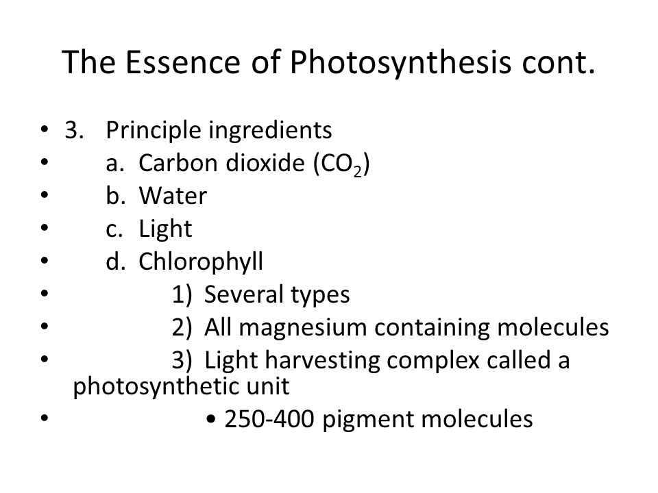 The Essence of Photosynthesis cont. 3.Principle ingredients a.Carbon dioxide (CO 2 ) b.Water c.Light d.Chlorophyll 1)Several types 2)All magnesium con
