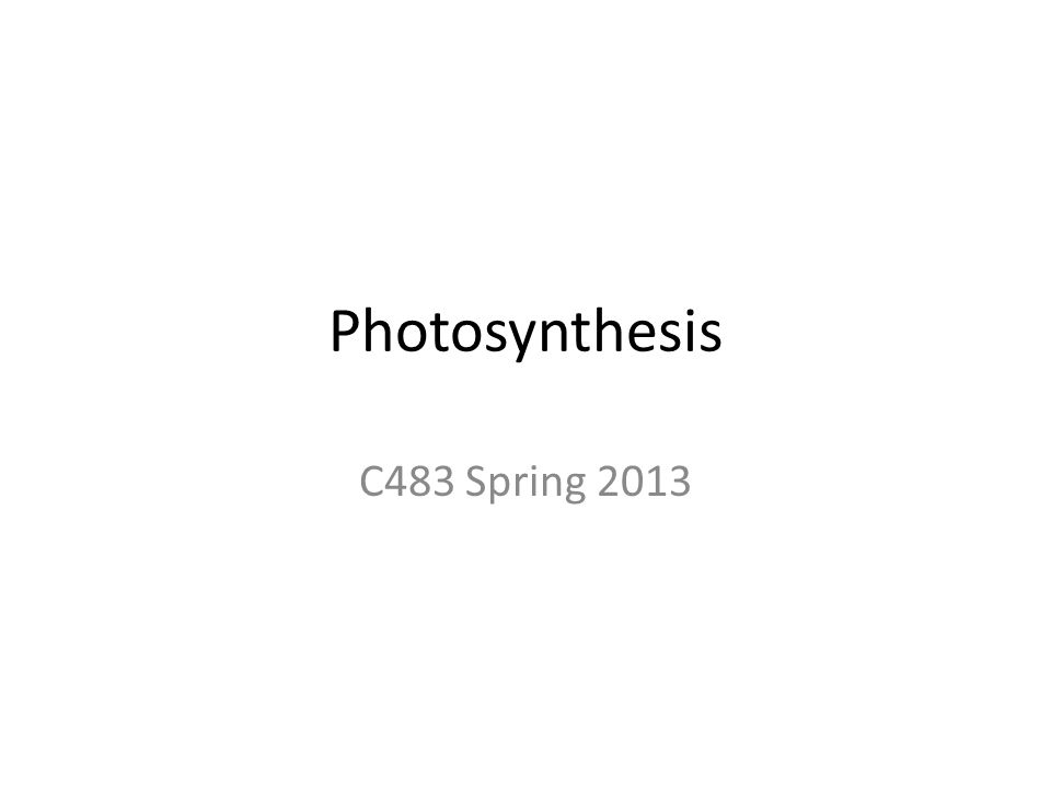 Photosynthesis C483 Spring 2013