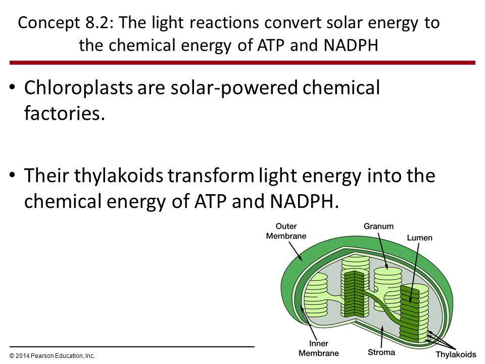 Light travels in waves Visible light Shorter wavelength Longer wavelength Lower energy Higher energy 380 450500550 650 600700750 nm