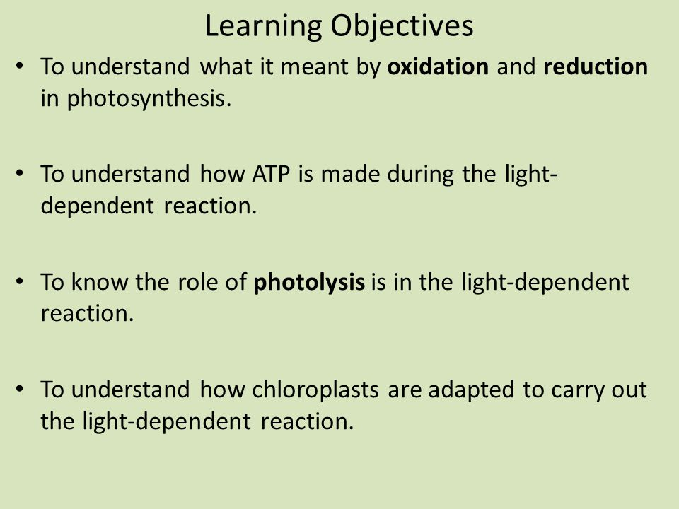 Learning Objectives To understand what it meant by oxidation and reduction in photosynthesis. To understand how ATP is made during the light- dependen