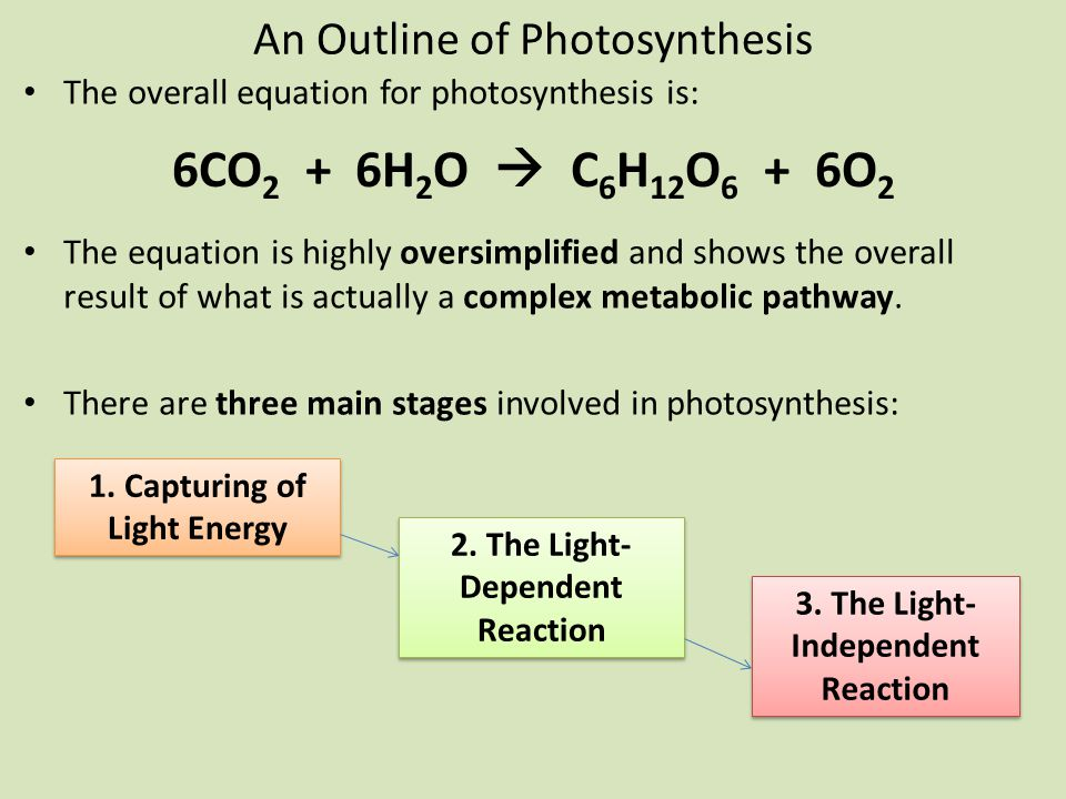 An Outline of Photosynthesis The overall equation for photosynthesis is: The equation is highly oversimplified and shows the overall result of what is