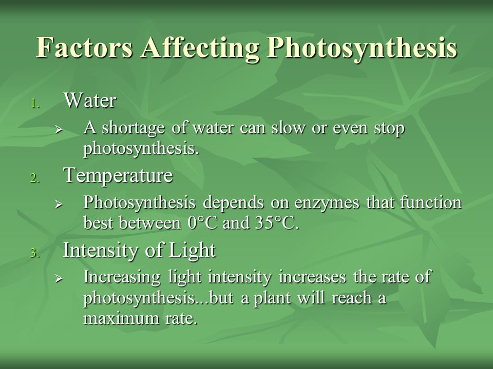 Factors Affecting Photosynthesis 1. Water  A shortage of water can slow or even stop photosynthesis. 2. Temperature  Photosynthesis depends on enzym