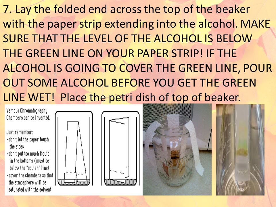 7. Lay the folded end across the top of the beaker with the paper strip extending into the alcohol. MAKE SURE THAT THE LEVEL OF THE ALCOHOL IS BELOW T