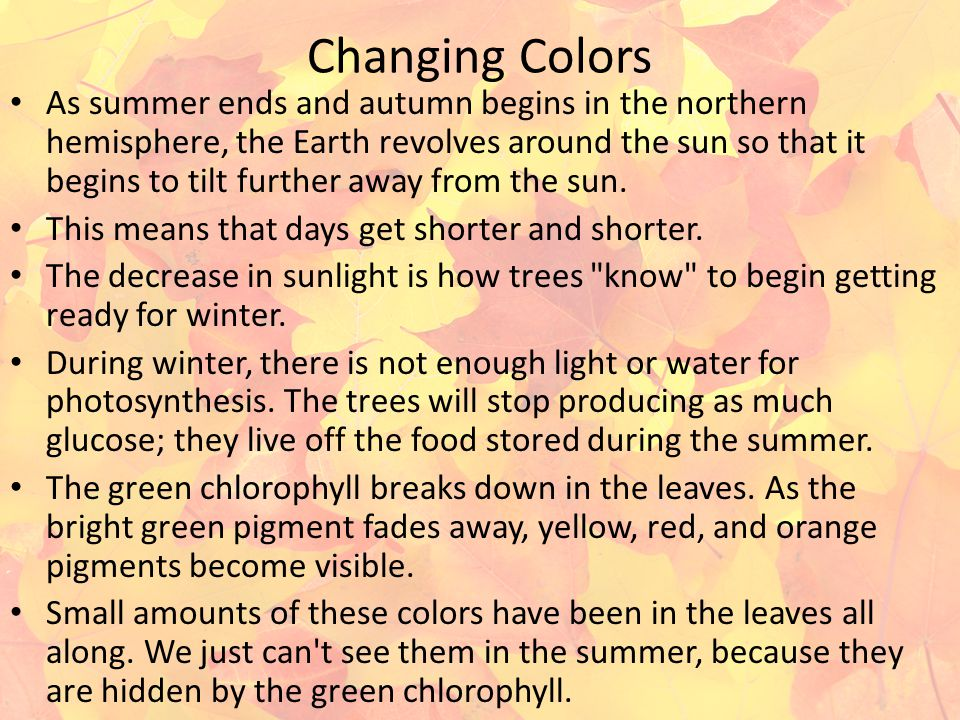 Changing Colors As summer ends and autumn begins in the northern hemisphere, the Earth revolves around the sun so that it begins to tilt further away