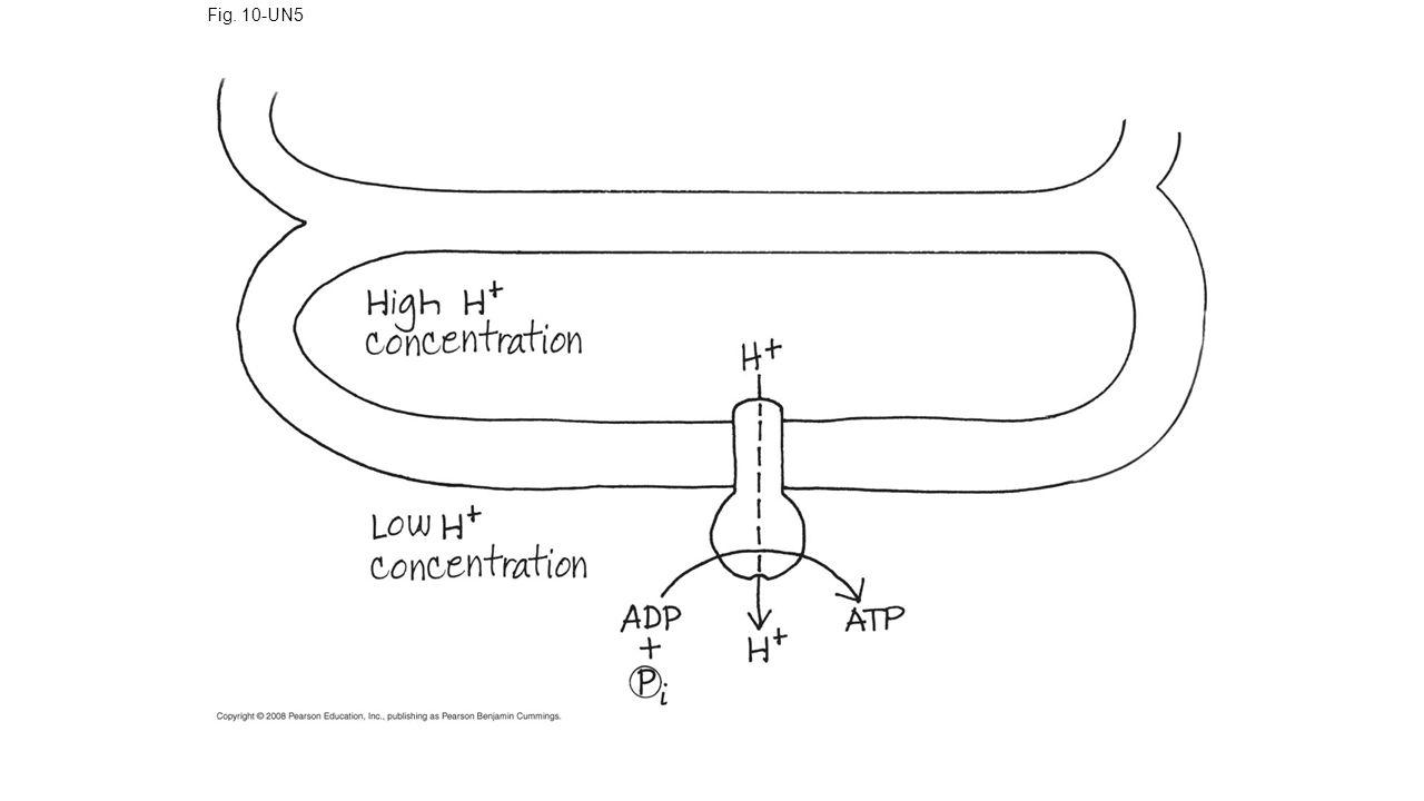 Fig. 10-UN5