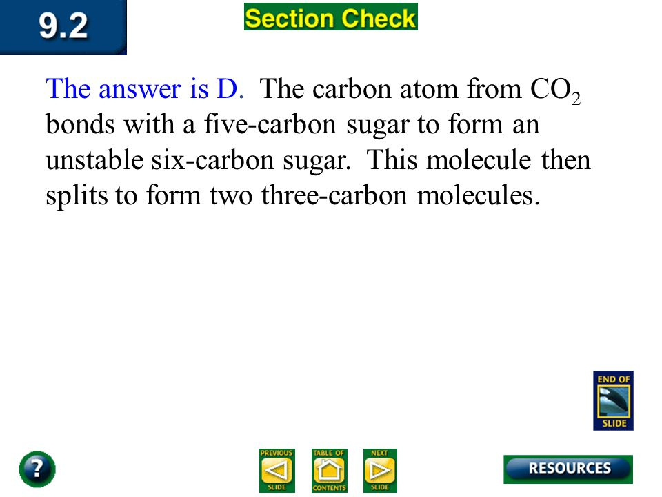 Section 2 Check The first step in the Calvin cycle is the ________. Question 3 D. Bonding of carbon to ribulose biphosphate C. Splitting of six-carbon