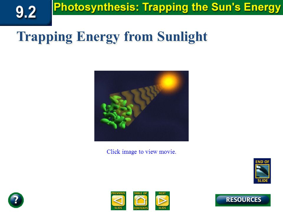Section 9.2 Summary – pages 225-230 Click image to view movie. Trapping Energy from Sunlight