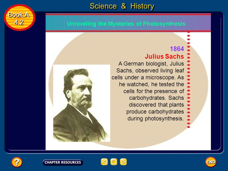 Book:A 4.2 Book:A 4.2 Science & History 1864 Julius Sachs A German biologist, Julius Sachs, observed living leaf cells under a microscope.