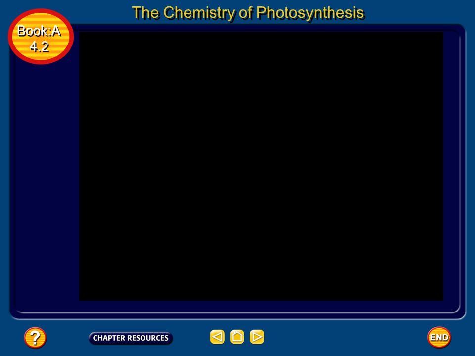 Book:A 4.2 Book:A 4.2 The Chemistry of Photosynthesis