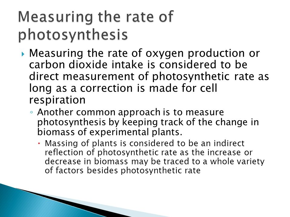  Measuring the rate of oxygen production or carbon dioxide intake is considered to be direct measurement of photosynthetic rate as long as a correcti