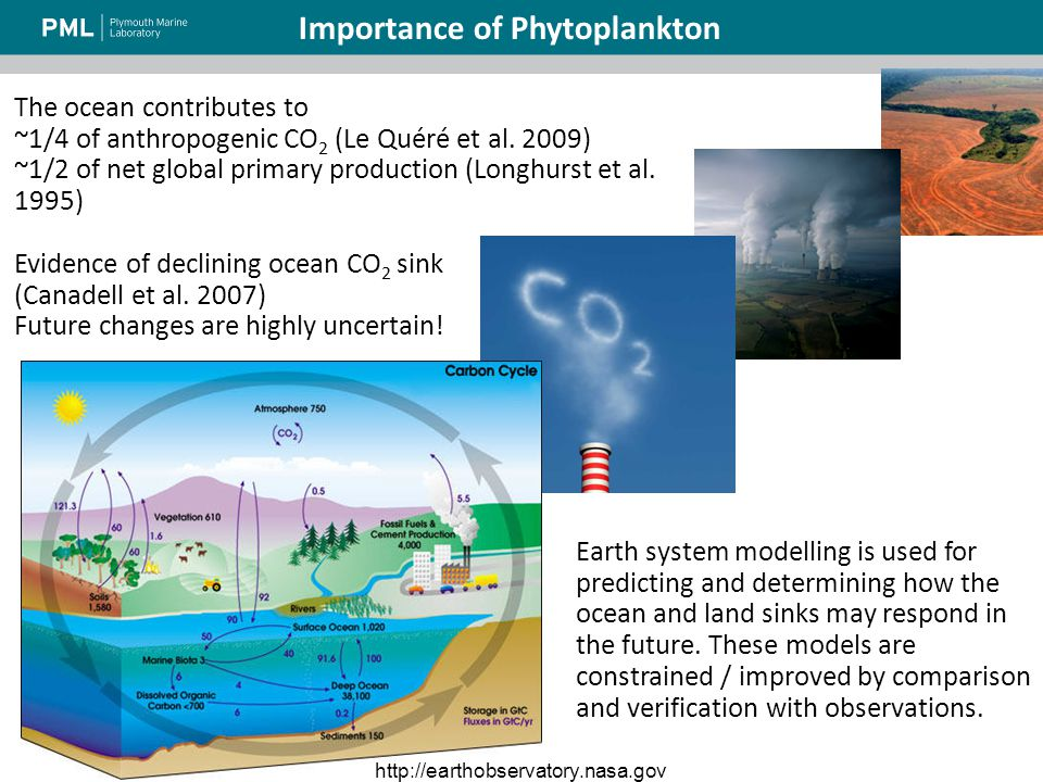 Earth system modelling is used for predicting and determining how the ocean and land sinks may respond in the future.