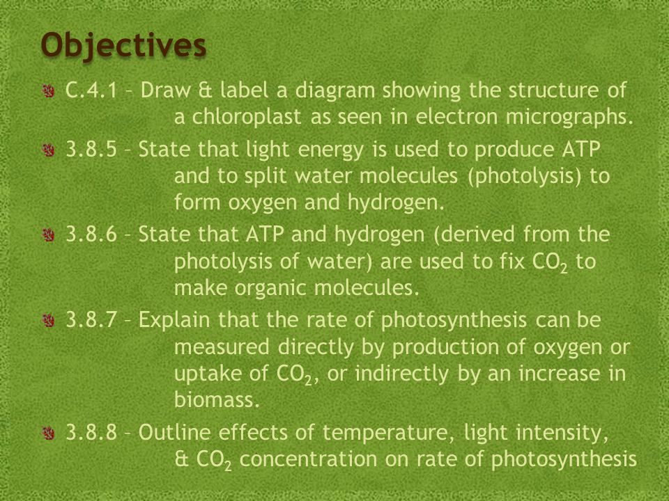 Objectives C.4.1 – Draw & label a diagram showing the structure of a chloroplast as seen in electron micrographs.