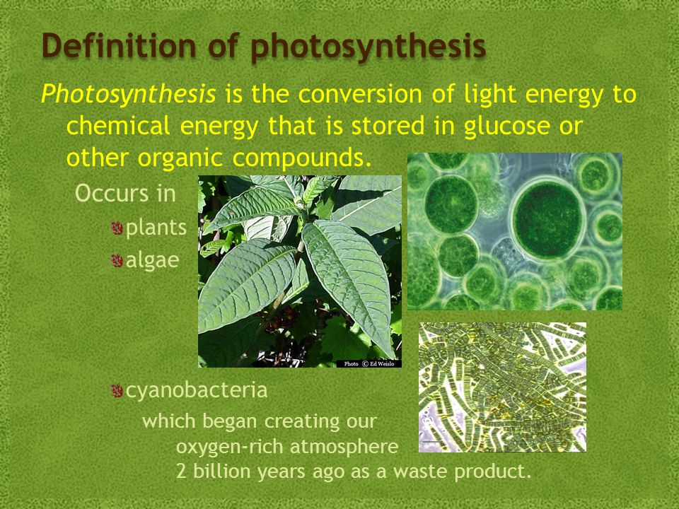 Definition of photosynthesis Photosynthesis is the conversion of light energy to chemical energy that is stored in glucose or other organic compounds.