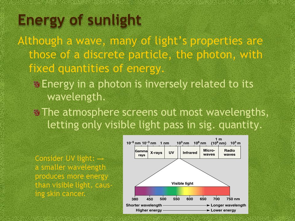 Energy of sunlight Although a wave, many of light's properties are those of a discrete particle, the photon, with fixed quantities of energy.