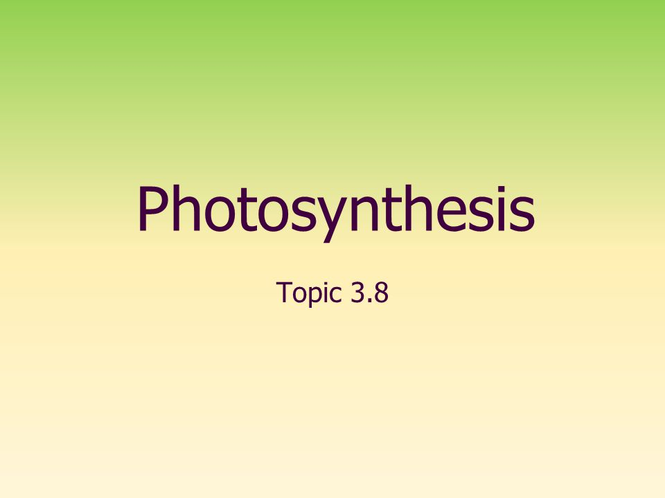 Photosynthesis Topic 3.8