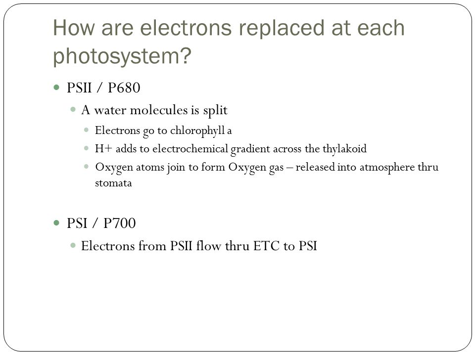 How are electrons replaced at each photosystem.