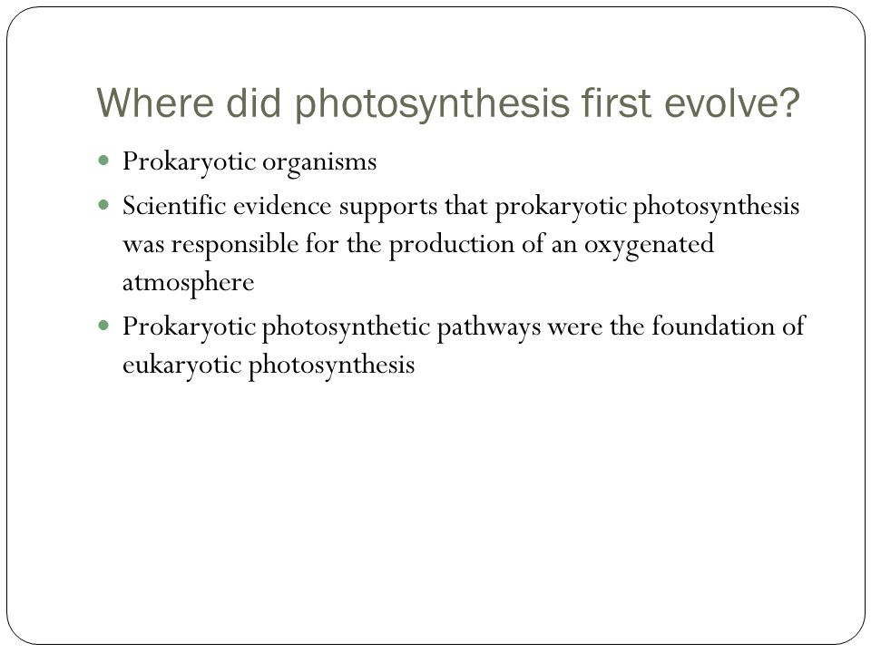 Where did photosynthesis first evolve.