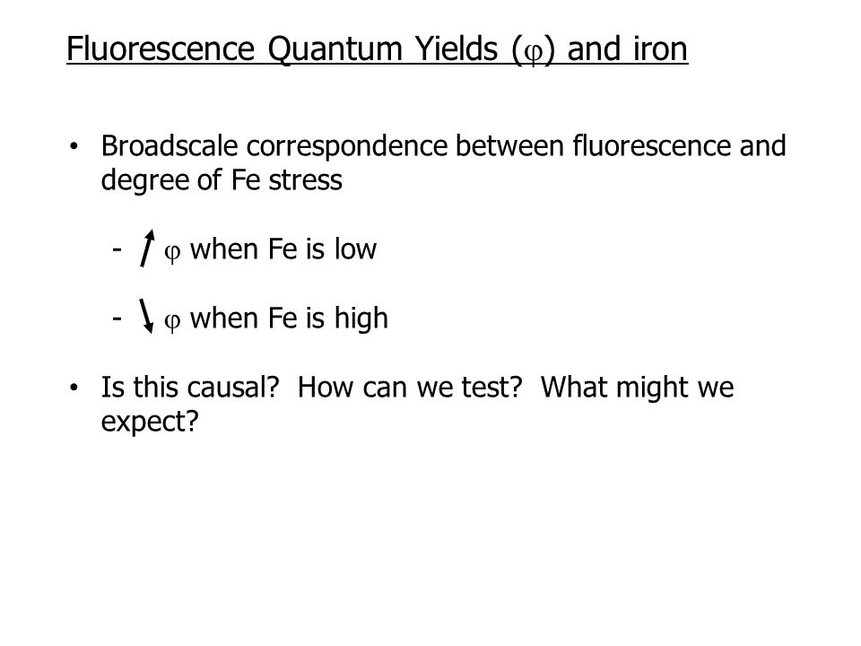 Broadscale correspondence between fluorescence and degree of Fe stress -  when Fe is low -  when Fe is high Is this causal.