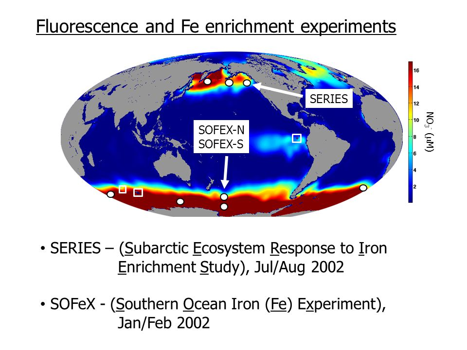 NO 3 - (  M) SERIES SOFEX-N SOFEX-S SERIES – (Subarctic Ecosystem Response to Iron Enrichment Study), Jul/Aug 2002 SOFeX - (Southern Ocean Iron (Fe) Experiment), Jan/Feb 2002 Fluorescence and Fe enrichment experiments