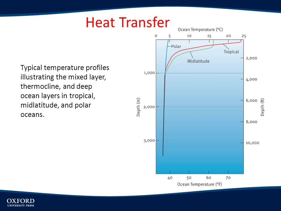 Typical temperature profiles illustrating the mixed layer, thermocline, and deep ocean layers in tropical, midlatitude, and polar oceans. Heat Transfe