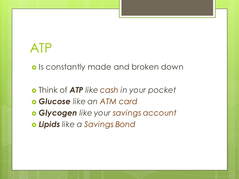 ATP  Is constantly made and broken down  Think of ATP like cash in your pocket  Glucose like an ATM card  Glycogen like your savings account  Lipids like a Savings Bond