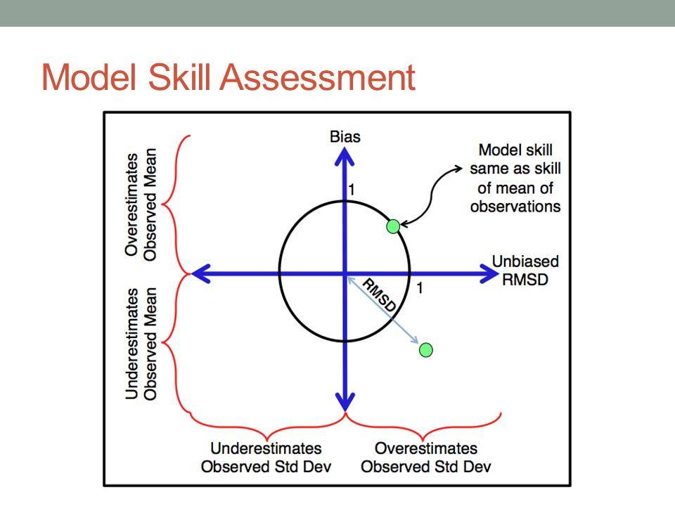 Model Skill Assessment