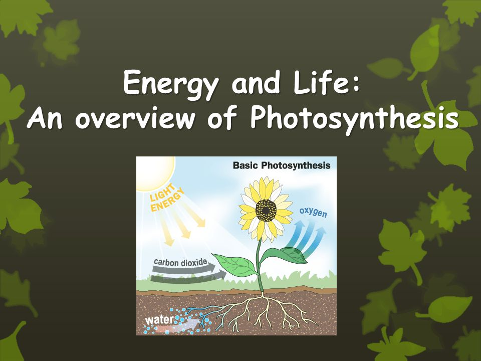 Energy and Life: An overview of Photosynthesis