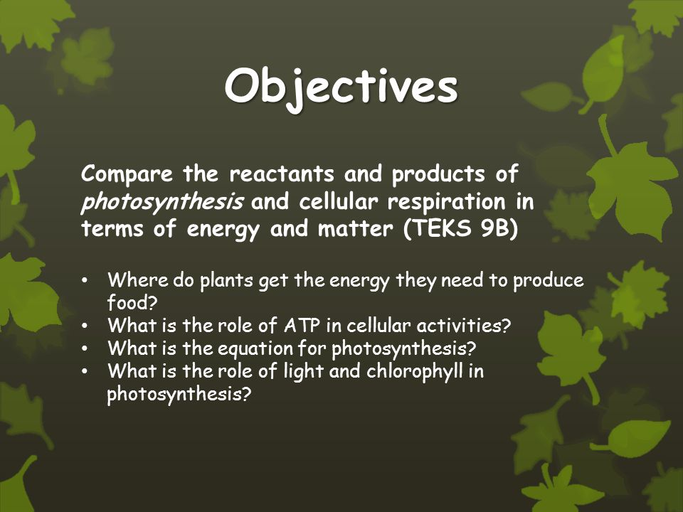 Objectives Compare the reactants and products of photosynthesis and cellular respiration in terms of energy and matter (TEKS 9B) Where do plants get the energy they need to produce food.