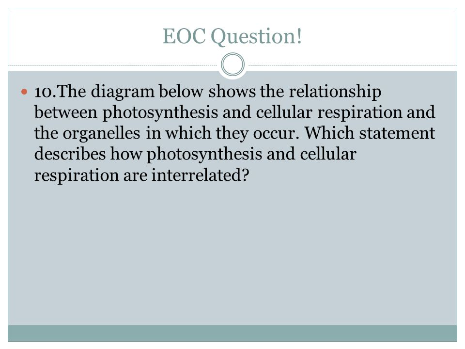 EOC Question! 10.The diagram below shows the relationship between photosynthesis and cellular respiration and the organelles in which they occur. Whic