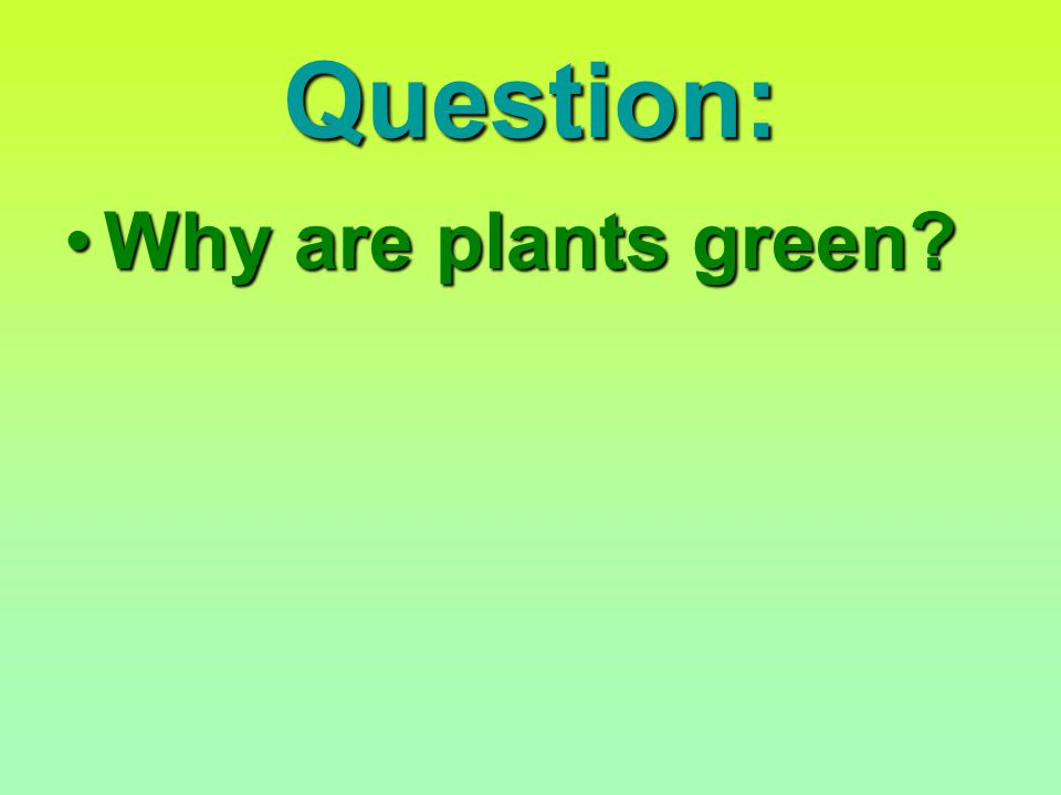 Question: Why are plants green Why are plants green