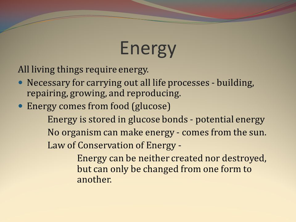 Energy All living things require energy. Necessary for carrying out all life processes - building, repairing, growing, and reproducing. Energy comes f