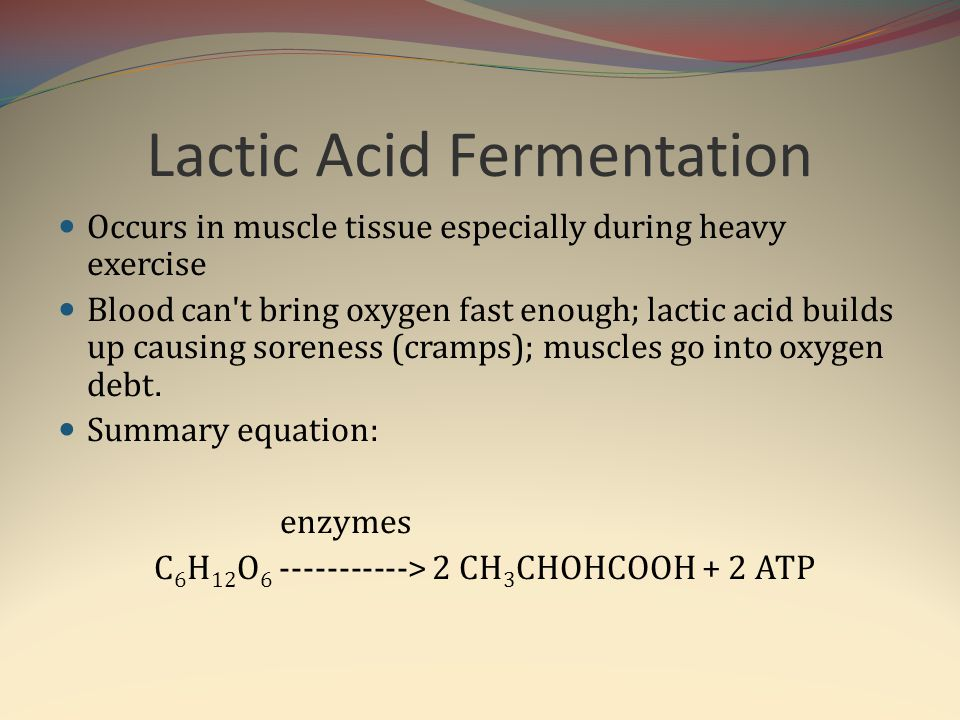 Lactic Acid Fermentation Occurs in muscle tissue especially during heavy exercise Blood can't bring oxygen fast enough; lactic acid builds up causing