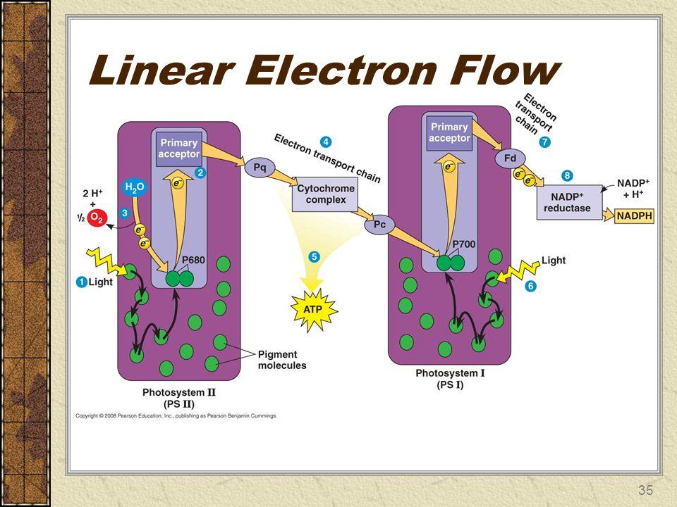 Linear Electron Flow 35