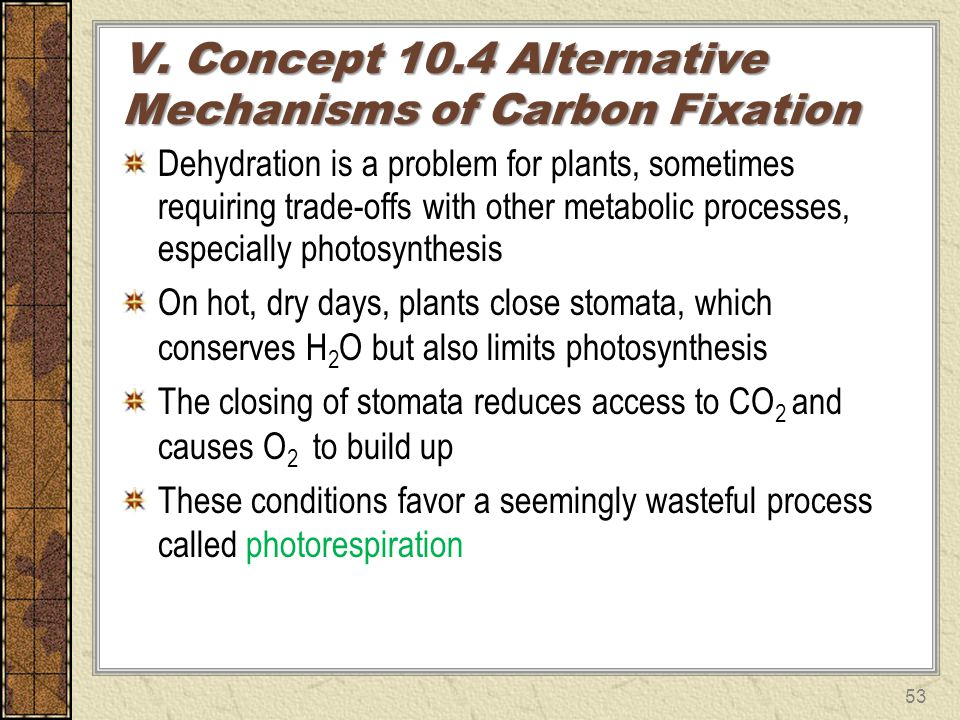 V. Concept 10.4 Alternative Mechanisms of Carbon Fixation Dehydration is a problem for plants, sometimes requiring trade-offs with other metabolic pro
