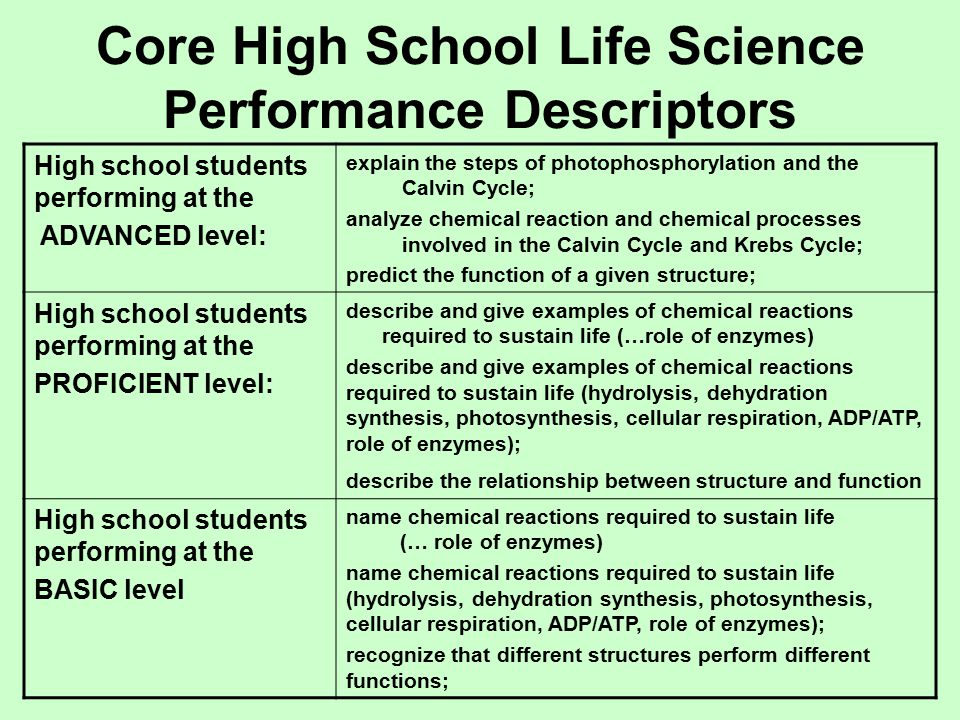 Core High School Life Science Performance Descriptors High school students performing at the ADVANCED level: explain the steps of photophosphorylation