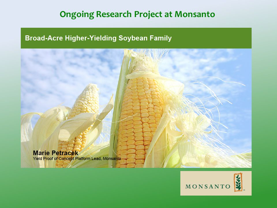 Ongoing Research Project at Monsanto