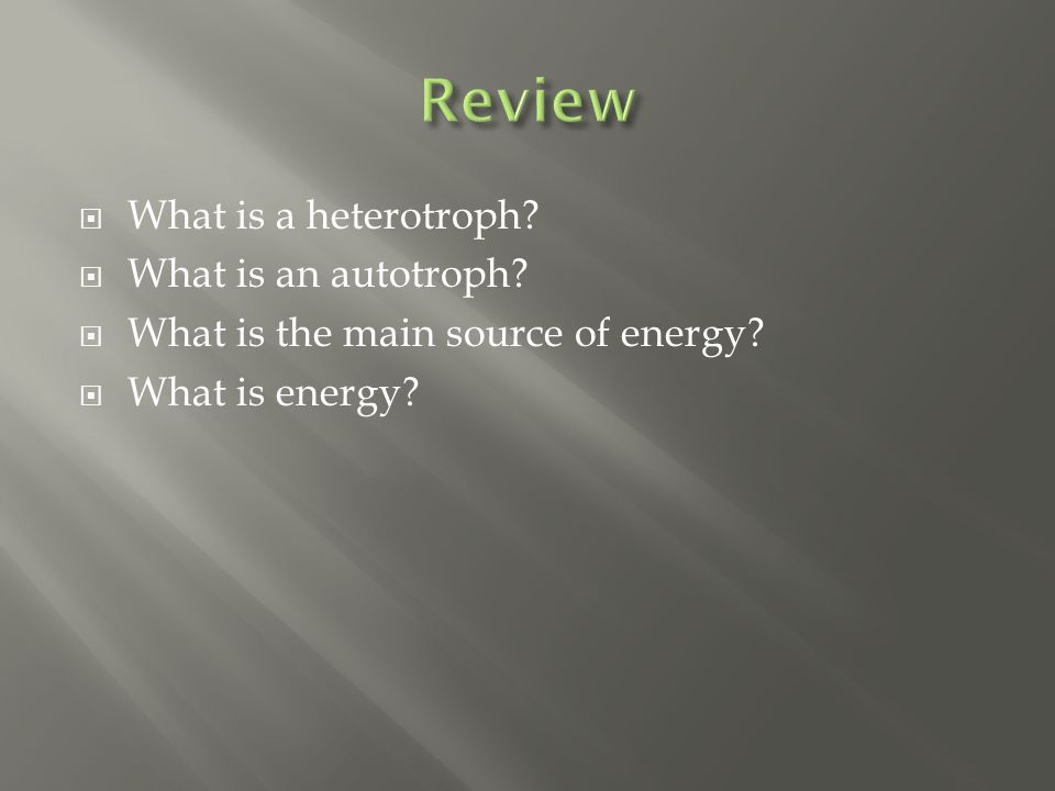 What is a heterotroph?  What is an autotroph?  What is the main source of energy?  What is energy?