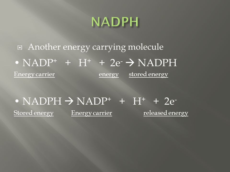  Another energy carrying molecule NADP + + H + + 2e -  NADPH Energy carrier energystored energy NADPH  NADP + + H + + 2e - Stored energy Energy carrier released energy