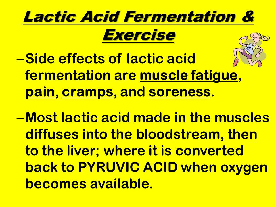 Lactic Acid Fermentation & Exercise – Side effects of lactic acid fermentation are muscle fatigue, pain, cramps, and soreness.