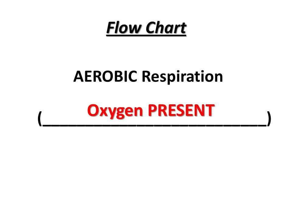Flow Chart AEROBIC Respiration (__________________________) Oxygen PRESENT