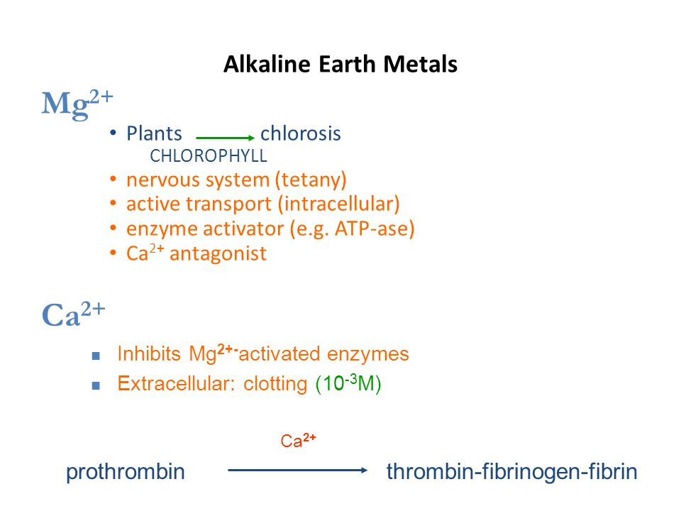 Alkaline Earth Metals Mg 2+ Plants chlorosis CHLOROPHYLL nervous system (tetany) active transport (intracellular) enzyme activator (e.g.