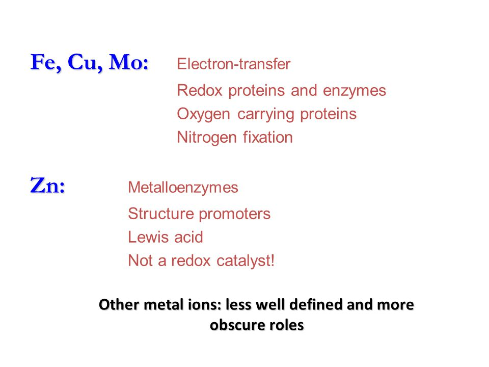Other metal ions: less well defined and more obscure roles Zn: Zn: Metalloenzymes Structure promoters Lewis acid Not a redox catalyst.
