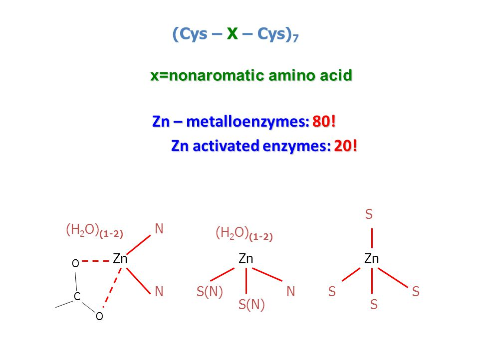 Zn – metalloenzymes: 80! Zn – metalloenzymes: 80! Zn activated enzymes: 20! (Cys – X – Cys) 7 x=nonaromatic amino acid Zn (H 2 O) (1-2) S S S SS(N) N