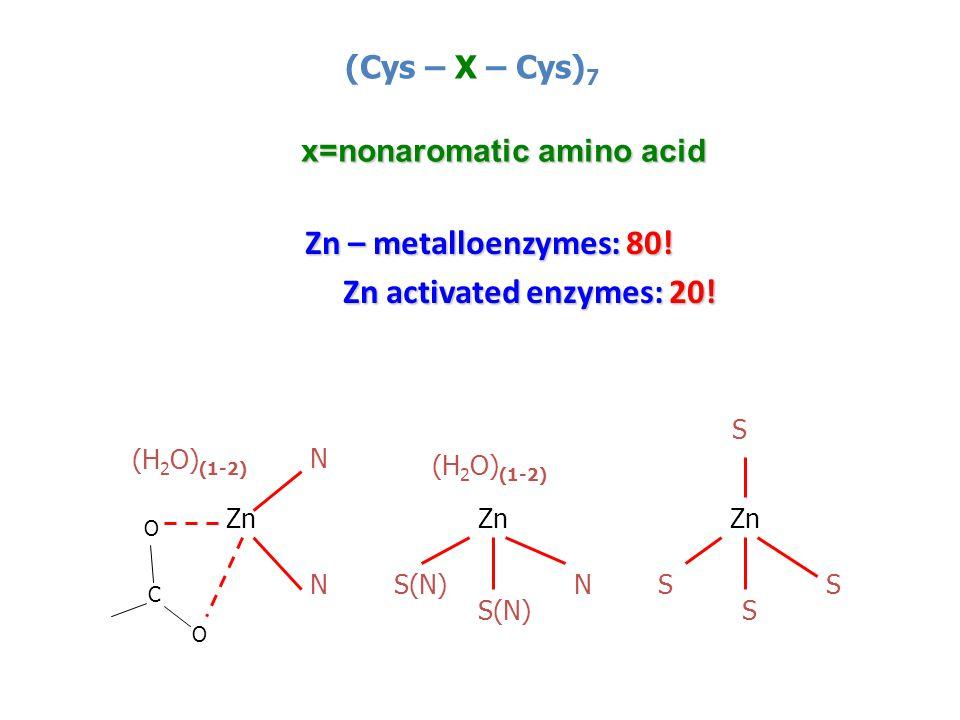 Zn – metalloenzymes: 80. Zn – metalloenzymes: 80.