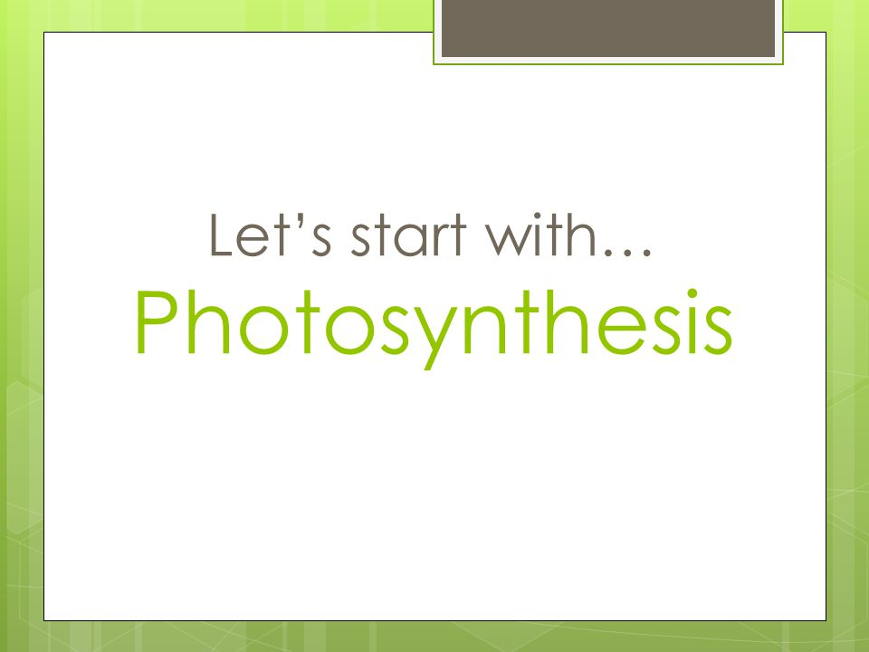 Let's start with… Photosynthesis