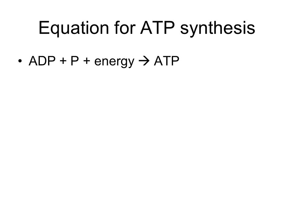 Equation for ATP synthesis ADP + P + energy  ATP